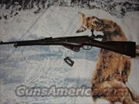 styer/carcano/lebel/jap...6 guns on price