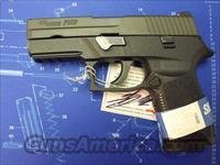 SIG 250-9MM  COMPACT