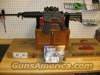 Bushmaster Carbine 15 w/Bushnell Red Dot Sight 90689, 223 Remington/5.56 Nato, 16 in, Synthetic Stock, Black Finish