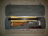 winchester 101 pigeon grade