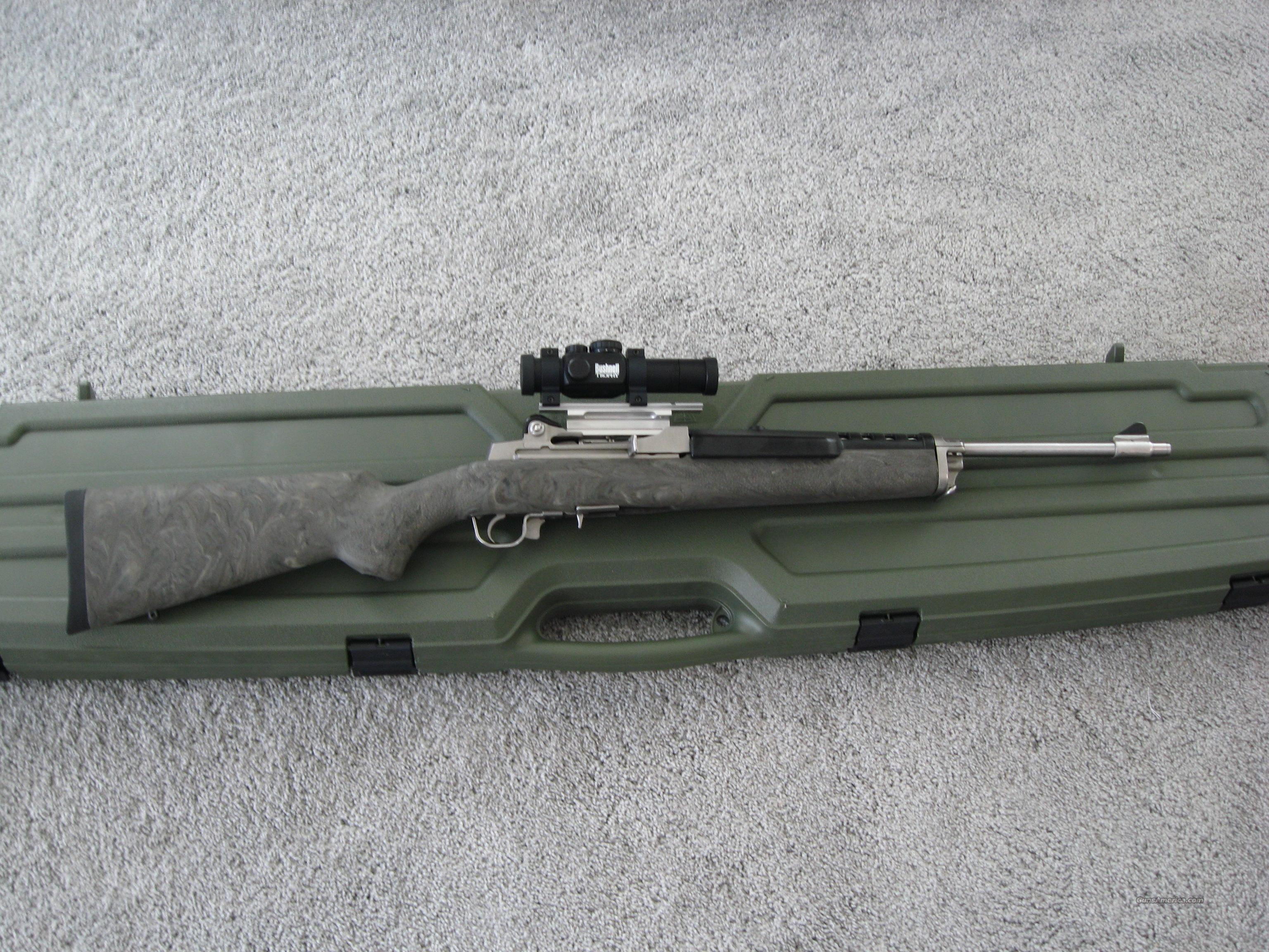 Ruger Mini 14 SS /w/ Scope – Hogue Stock – Beamshot Laser - 2 Mags -  REDUCED!