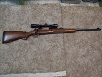 Winchester Model 70 Safari Express, Leupold 1 3/4 X 6