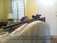 Remington 700 ADL .223 camo stock w/ scope