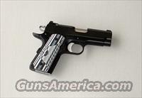 Dan Wesson ECO Officer 45 ACP