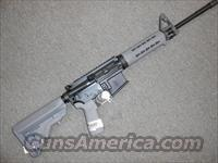 SigSauer M400 5.56 16 gray NO CC Fees
