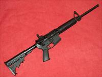 Ruger AR-556 Rifle (5.56)