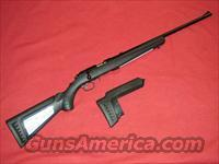Ruger American Rifle (.17 HMR)