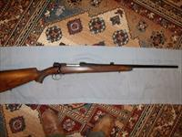 CUSTOM MAUSER by ROY VAIL .22-250