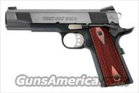 "COLT LWT GOVT. - MODEL 01880XSE - ""BLUED FINISH"" .45 ACP"