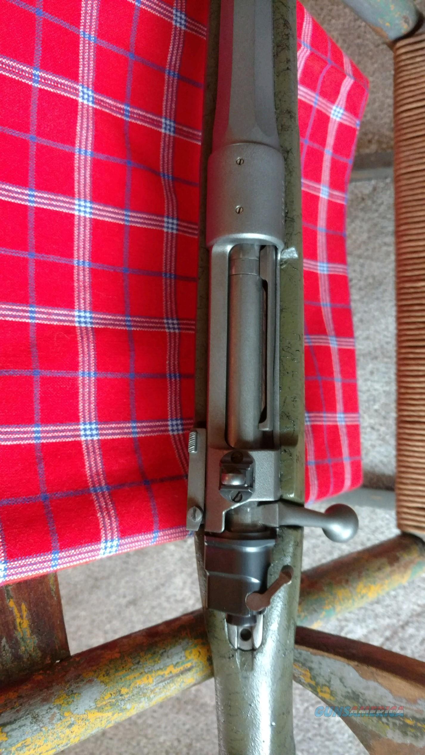 Custom 98 Mauser 458 Lott
