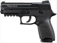 "SIG SAUER P250 COMPACT 22 LR ""NO CREDIT CARD FEE"""