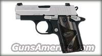 SIG P238 380ACP DUO TONE NS BLACKWOOD GRIPS 1 6RD