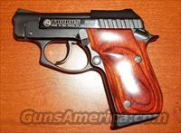 Taurus PT-22 .22LR with rosewood grips