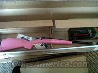 Keystone sporting arms CRICKET Keyston 220P crickett package.. my first rifle in PINK synthetic blued with scope and mount
