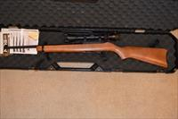 Ruger 10/22 w/Scope 31159