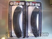 2 Ruger BX-25 factory mags/ 500rds Fed AE 22lr HVSP