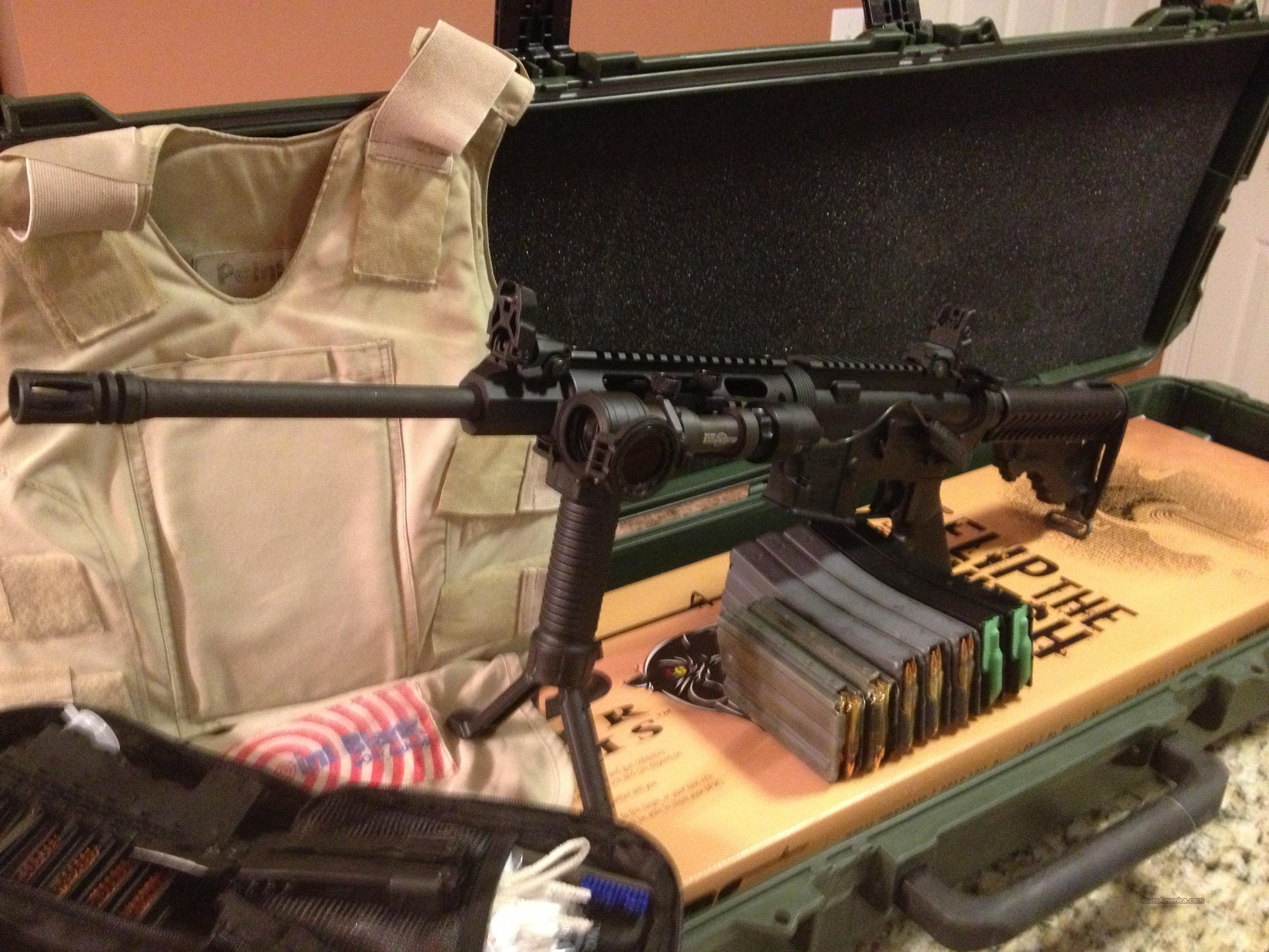 DPMS Rifle Plus 500 Rounds Point Blank Vest and many extra's
