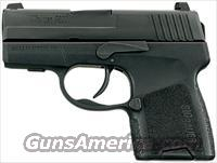 Sig Sauer P290RS Sub Compact 9mm 290RS-9-BSS 290 p290
