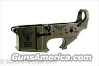 SALE SPECIAL Spikes Tactical Punisher Lower Receivers