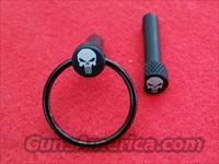 PUNISHER EXT TAKEDOWN PINS / KEY RING 5.56 PANTHER ARM CMMG BCM UTG 223 300 AAC