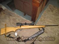 Savage Arms Model 110 .270Cal. Rifle w/Scope
