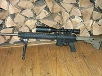 CUSTOM AR-15 in .204 Ruger