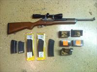 Ruger Mini 14 For Sale Ranch Model
