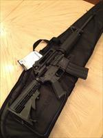 DELTON AR-15 Military Spec. Tactical Rifle