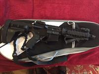 Sterling Arsenal Custom AR Pistol W/Sig Stabilizing Brace, 2 30RD PMAGs, Low Profile Carry Case