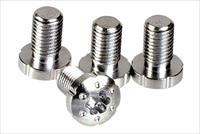 Strike Industries 1911 Stainless Torx Screws