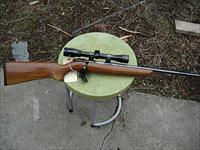 remington model 511 w/scope 22lr