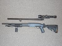 SSP 12-GAUGE SHOTGUN WITH FOLDING STOCK....BLACK ACES TACTICAL... one or two barrels