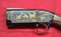 Winchester Commemorative Quail Unlimited 20 GA. Pump shotgun