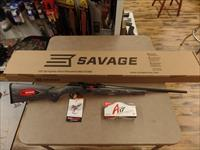 Savage Model A 17 Sporter (17 HMR) AMMO NOT Included But Avaliable