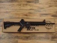 Smith & Wesson M&P 15/22