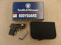 Smith & Wesson Bodyguard With Insight Laser (380 Acp)