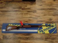 Mossberg Patriot Walnut (243 Win.)