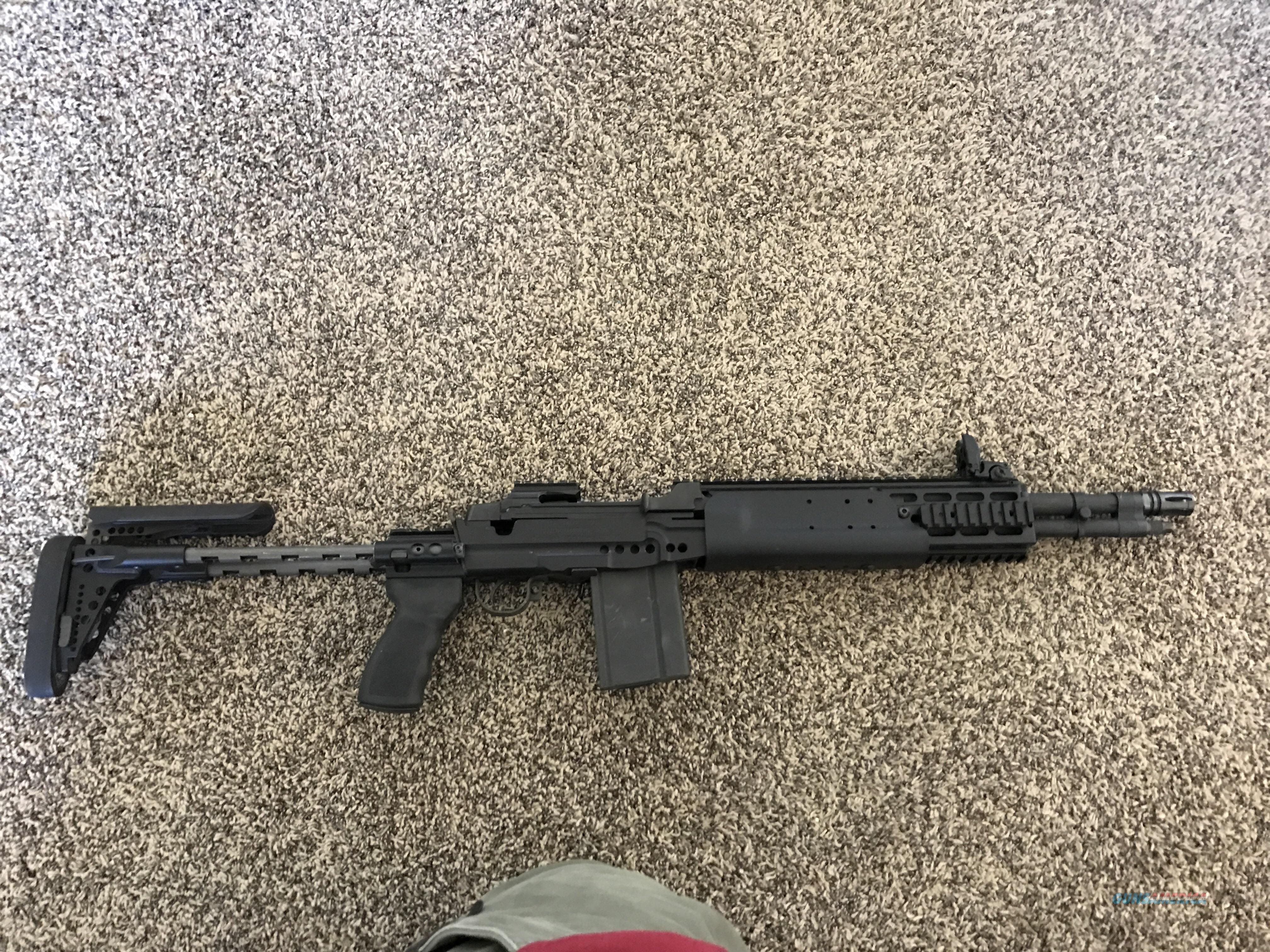 M1A bula defense xm21 sage ebr