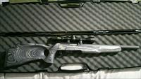 Ruger 10/22 MAGNUM with extras