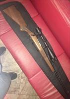 REMINGTON 700 .270win. w/ BUSHNELL SCOPE