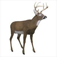 Flambeau Masters Series Boss Buck Decoy 5965MS