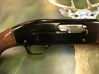 Winchester 50 Featherweight