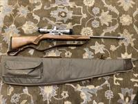 Lipsey's Exclusive Ruger 10/22 Stainless 22 LR