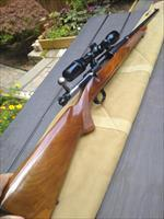 Winchester Model 70 Carbine in .30WCF