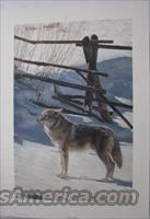 "Terry Isaac's ""Rail Fence-Coyote"""