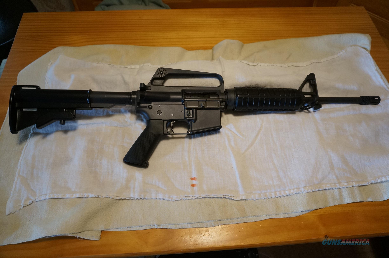 Colt M16a1 5 56 223 Transferable Carbine For Sale