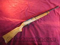 RUGER 10/22 TAKEDOWN WOOD 22LR Cal NEW