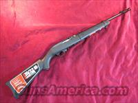 RUGER 10/22 TAKE DOWN BLUED SYNTHETIC STOCK NEW