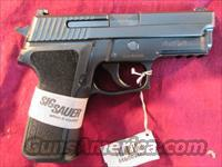 SIG SAUER P229 40 CAL W/NIGHT SIGHTS NEW