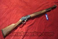 MARLIN 1895 GUIDE GUN 45/70 GOV'T BLUE NEW (1895G)